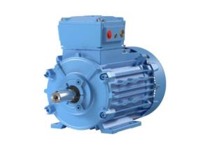 Standard motors - Iron cast / Aluminium / IE2 to IE4